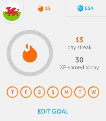 Duolingo13days